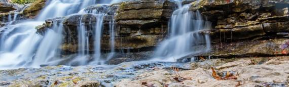 Nature Photography – Tanyard Creek Nature Trail