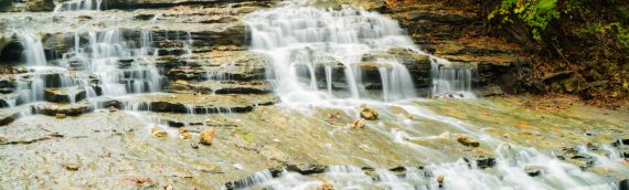 Nature Photogrpahy – Autumn in Bella Vista Arkansas