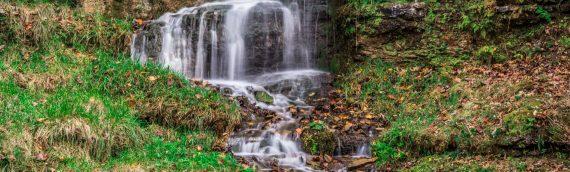 Nature Photography – Dogwood Canyon