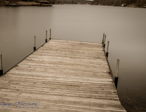Nature Photography – Lake Avalon in Bella Vista, Arkansas